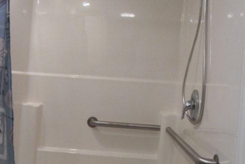 1-handicap shower