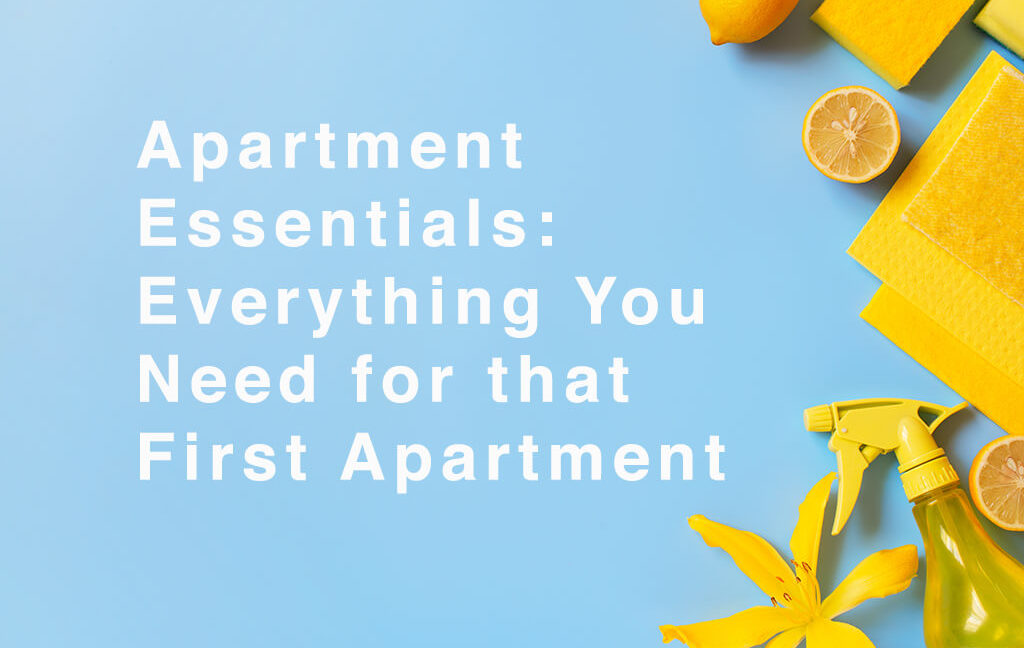 Apartment Essentials: Cleaning Supplies
